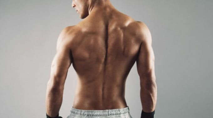 Man Posing With Muscled Back