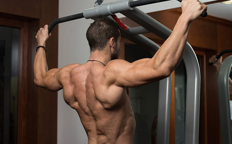 Back muscles pullups